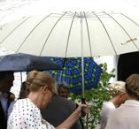 Stort Ivoryfärgat paraply